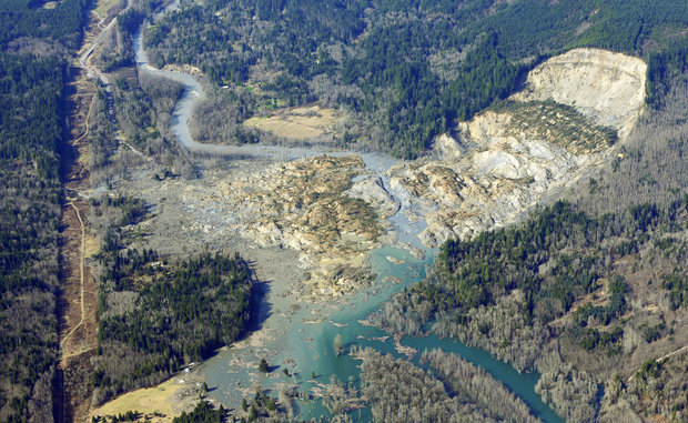 Picture of Oso Landslide